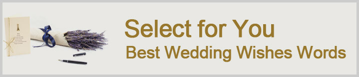 Best Wedding Wishes Words