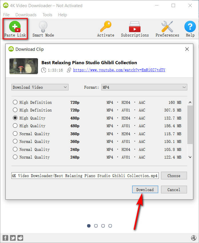 4K Video Downloader video download interface