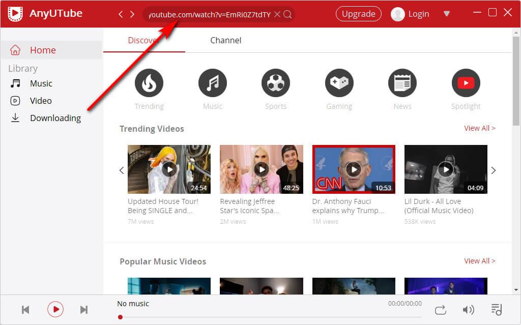 Ricerca URL video AnyUTube