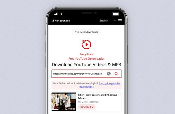 تم لصق عنوان URL في مربع البحث في برنامج تنزيل YouTube المجاني