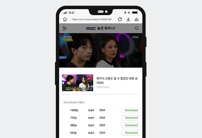 Laden Sie das Naver-Video mit AnyVid herunter