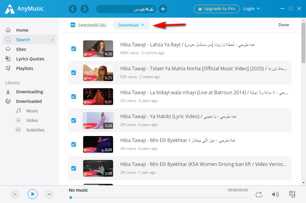 Wählen Sie mehrere Videos zum Batch-Download aus