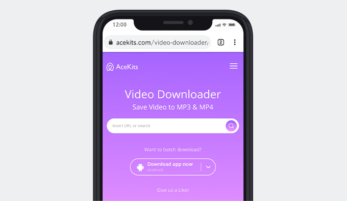 Downloader di video AceKits