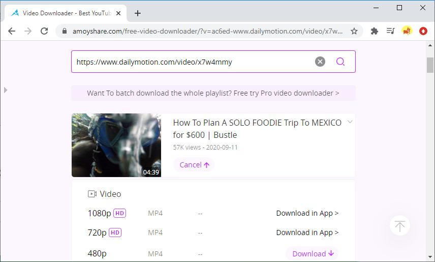 Scarica video Dailymotion online con Free Video Finder