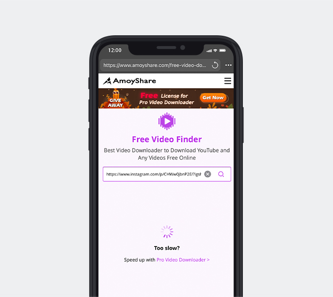 Paste the link into Free Video Finder