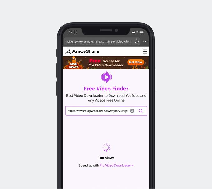 Fügen Sie den Link in Free Video Finder ein