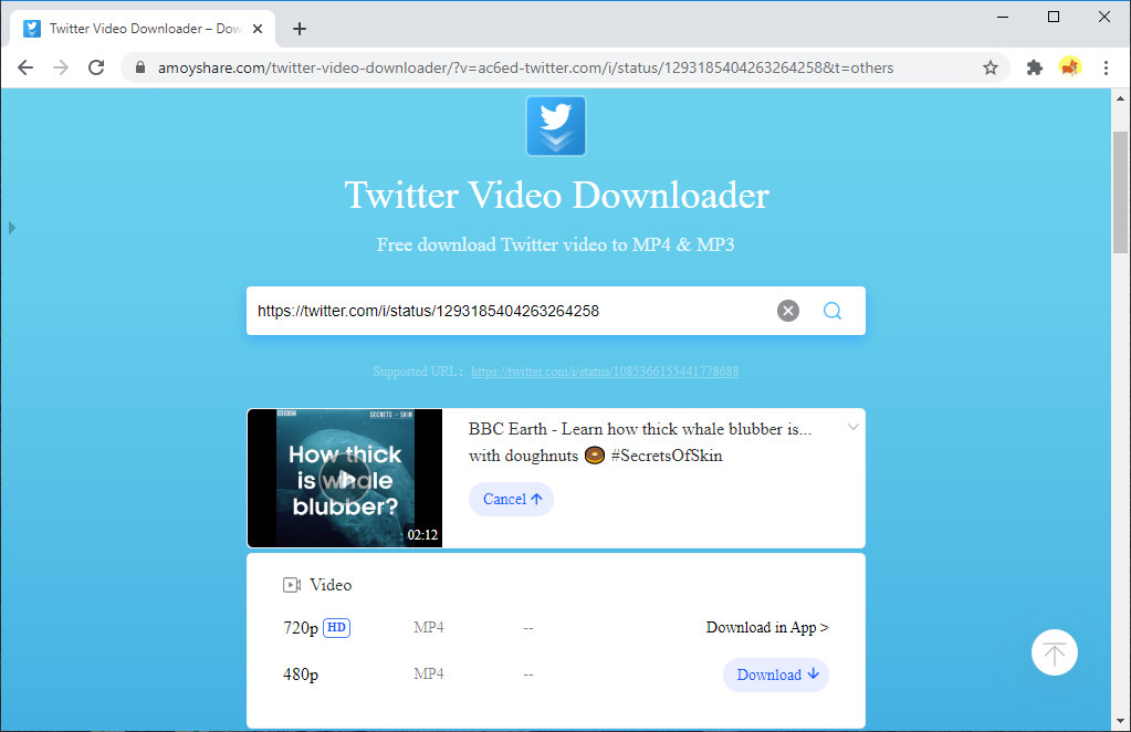 Download the Twitter video