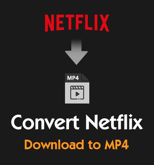 قم بتحويل Netflix Download إلى MP4
