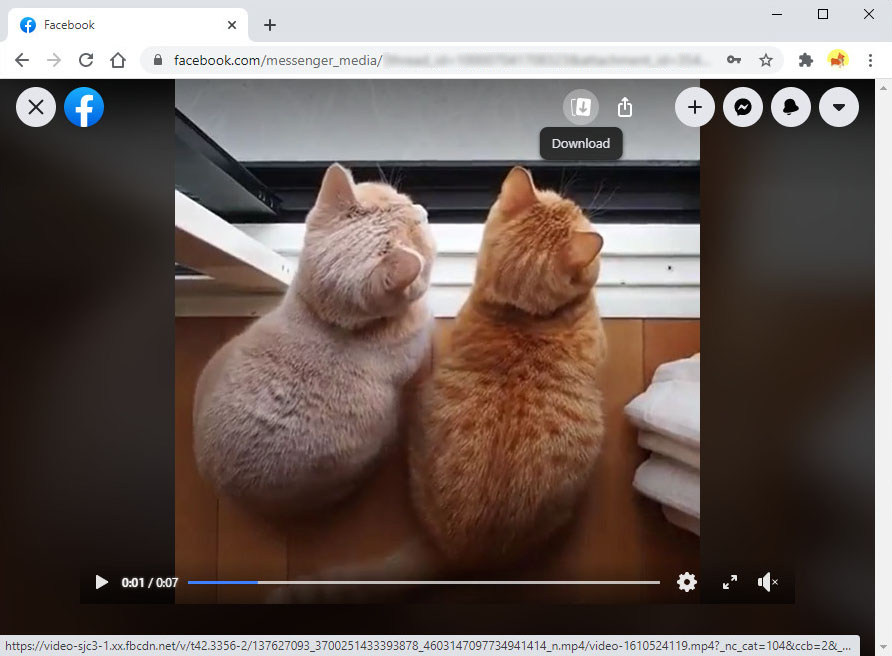 Save video from Messenger on PC