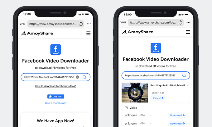 Paste the link and download the Facebook live video