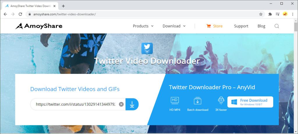 Fügen Sie den Link zu Amoyshare Twitter Video Downloader ein