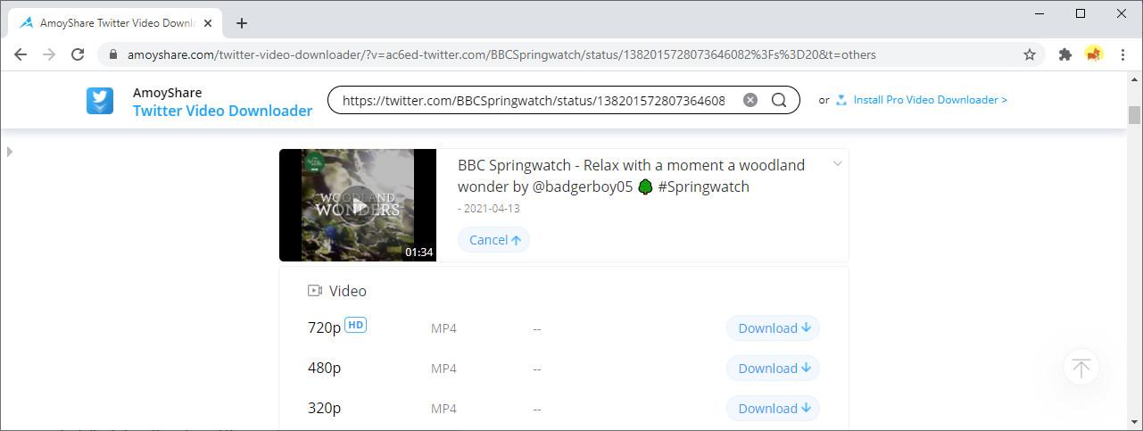 Start downloading Twitter video