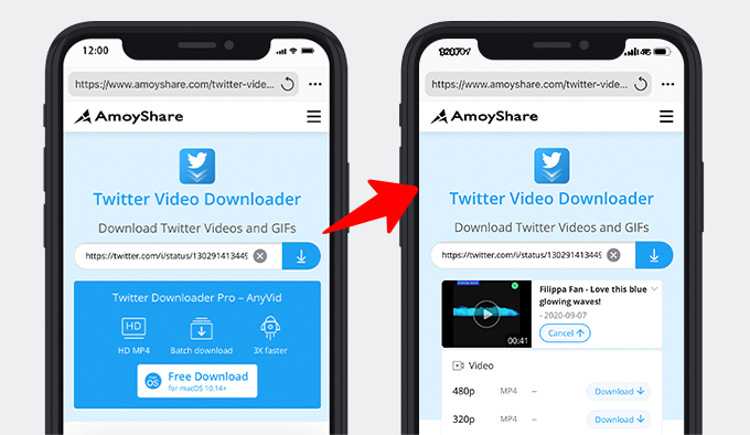 Paste the link and download the Twitter video