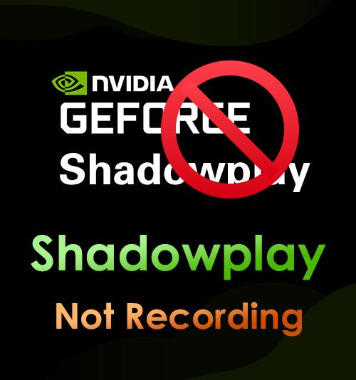 Shadowplay nimmt nicht auf